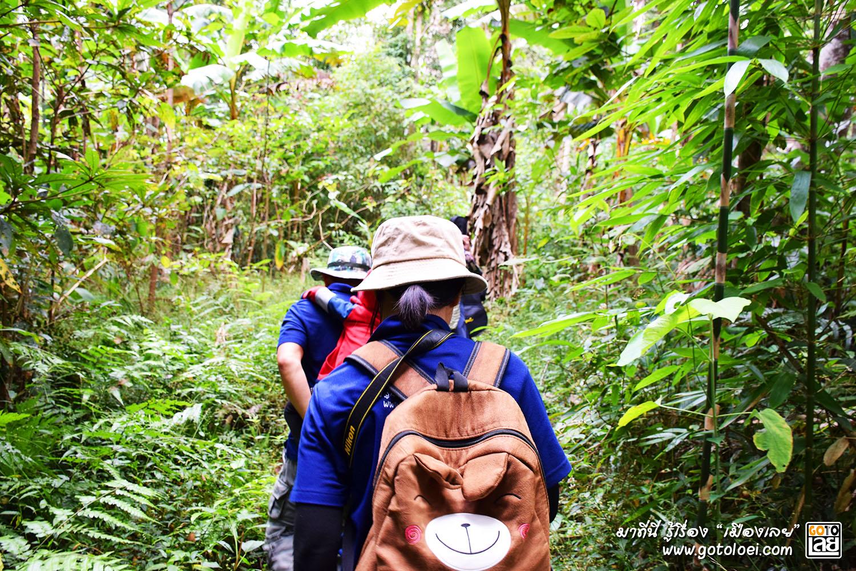 การเดินทางไปยังเนิน 1408 ที่เป็นป่ารก