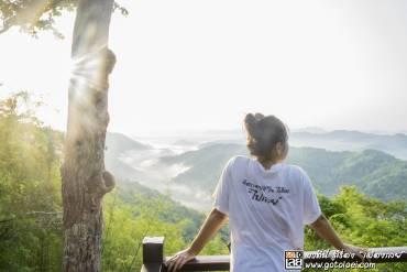 รูปภาพรูปภาพรูปภาพเที่ยวภูบ่อบิด ชมทะเลภูเขา คละเคล้ากับสายหมอก