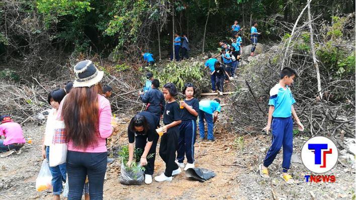 นักเรียนเข้าร่วมโครงการปลูกป่าเพื่ออาหาลิง วัดผาหมากฮ่อ จ.เลย กว่า200คน